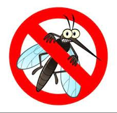 keep-mosquitoes-out